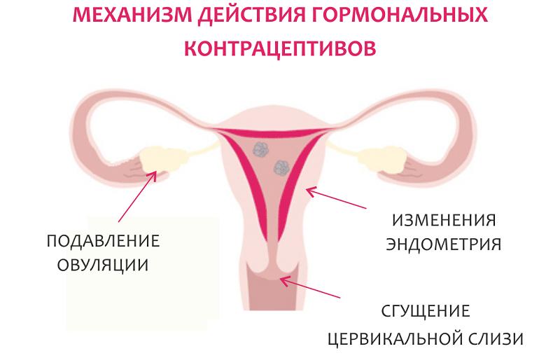 Перечень оральной контрацепции