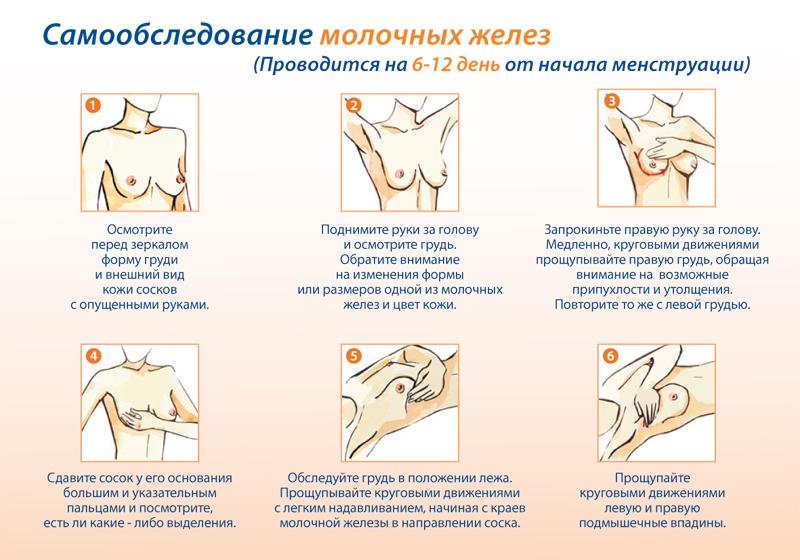 Руководство По Узи Молочных Желез - фото 9