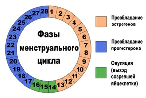 Тест На Овуляцию Цена Инструкция Фото - фото 11